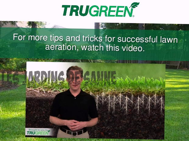 Fordelene ved Lawn Aeration: Nyttige tips for lufting av plenen
